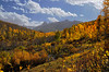 Valley of fall colors near Ridgway Colorado