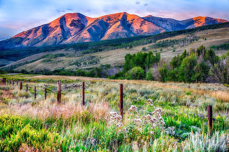 Whetstone Mountain (12,527 ft)