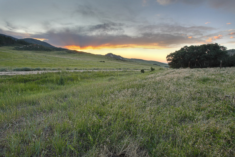 PenleyRanch_2Aug2009_03