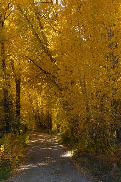 Colorado September off road 63