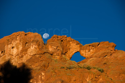 Moon Over Kissing Camels