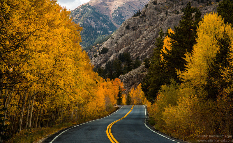 Gold and S Curve Road To Aspen