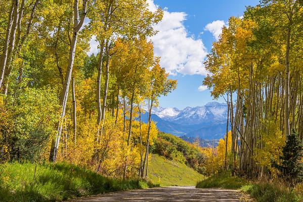 Fall Roadtrip