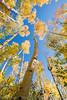 RD-Colorado trip-morn-Fri092614-1140