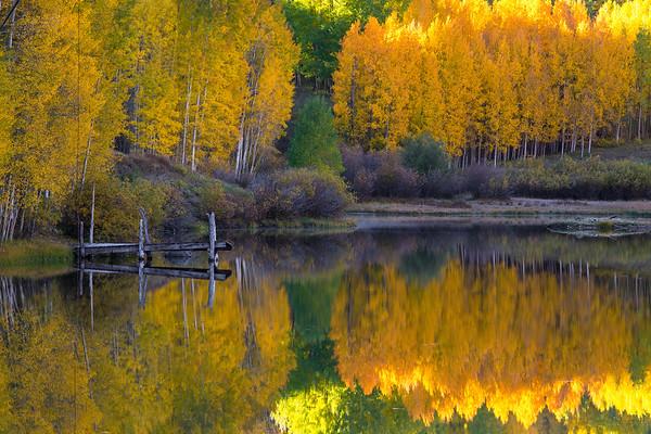 Fall Calm