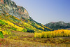 Colorado, Crested Butt, Fall Colors, Foliage, Landscape, 科罗拉多 洛矶山 秋色, 风景