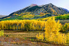 Colorado, Rocky Mountains, Crested Butt, Fall Colors, Foliage, Landscape, 科罗拉多 洛矶山 秋色, 风景