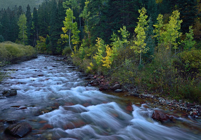 Castle Creek.  Roadside view near Aspen Colorado