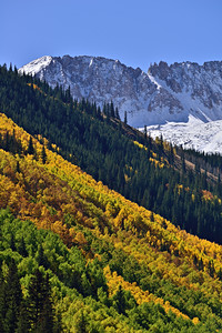 Slopes of Autumn  A mix of fall color and winter snow up Castle Creek Valley near Aspen, Colorado