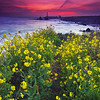 Spring sunset,<br /> Central Pacific Coast, CA