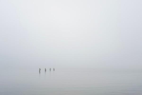 089 Foggy start