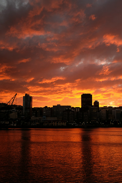 Wellington City Sunset