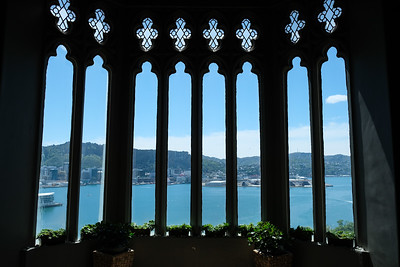 Wellington Harbour from St. Bernards