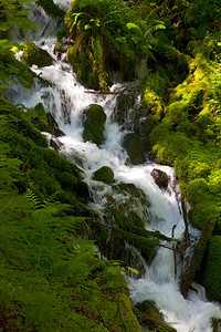 Wahkeena Creek, Columbia Gorge, OR