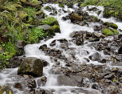 Columbia Gorge Meet - Pacific Northwest Photography Forum