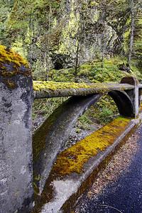 Bridge Railing at Oneonta Gorge    Sigma 10-20mm f/4-5.6 EX DC HSM