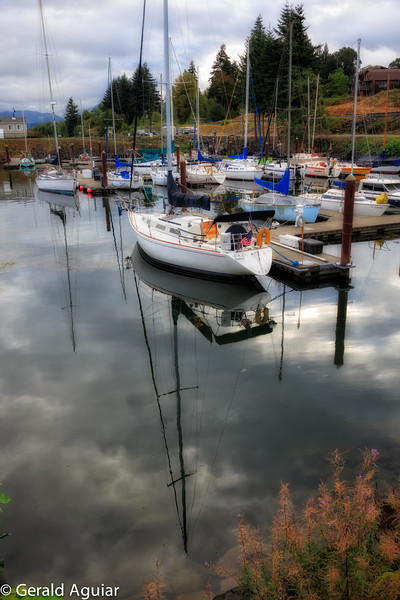 This serene setting of the marina at Cascade Locks attempts to show how peaceful that morning was.
