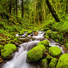 """""""Mossy creek"""" - Ruckel Creek, an extremely beautiful creek in Columbia River Gorge, Oregon"""