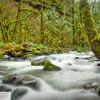 Moffett Creek - 147