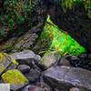 """Trail"" to Wahe/Moffett Creek Falls - Columbia River Gorge"