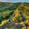 Rowena Crest Curves