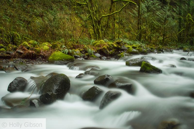 Moffett Creek - 148