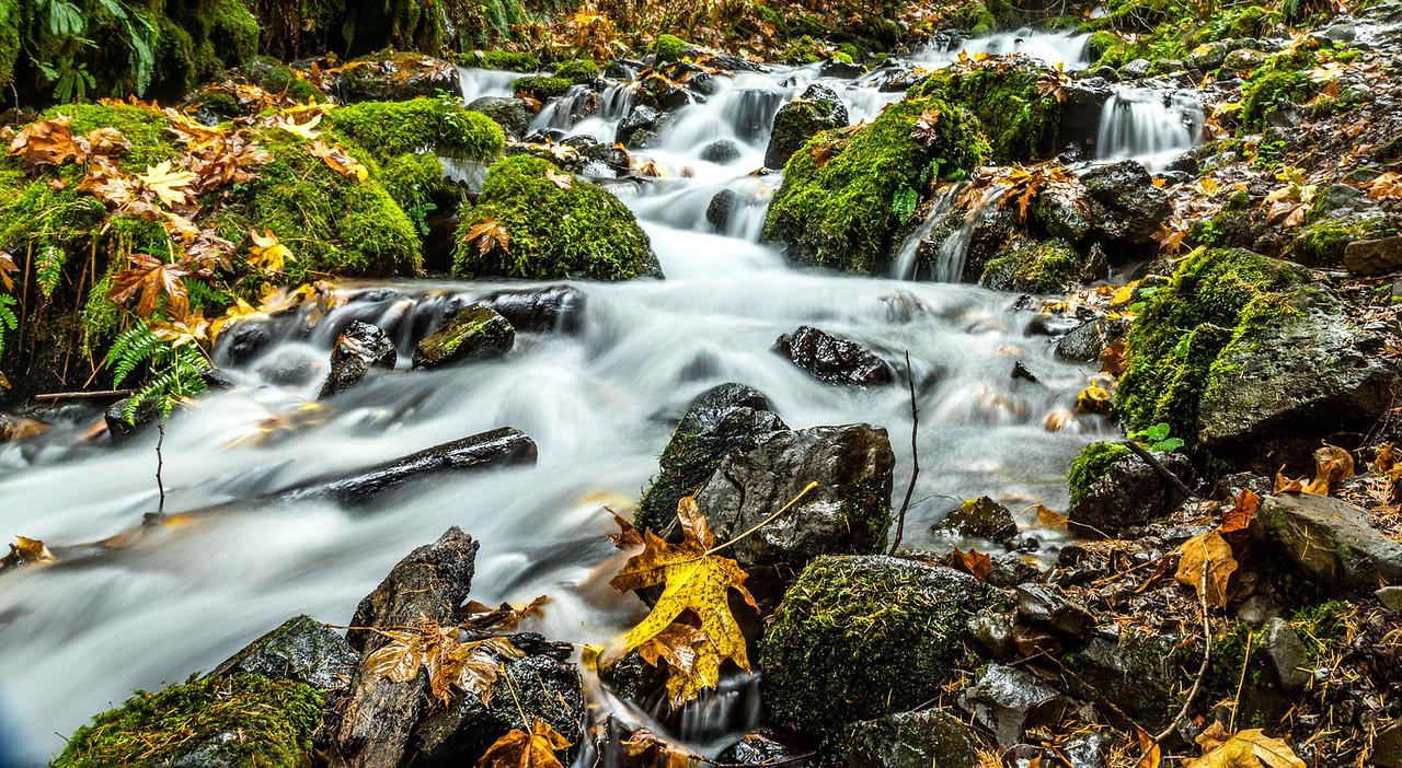 Wahkeena creek in the Columbia River Gorge