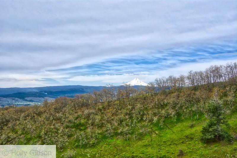 Mt. Hood - Columbia River Gorge