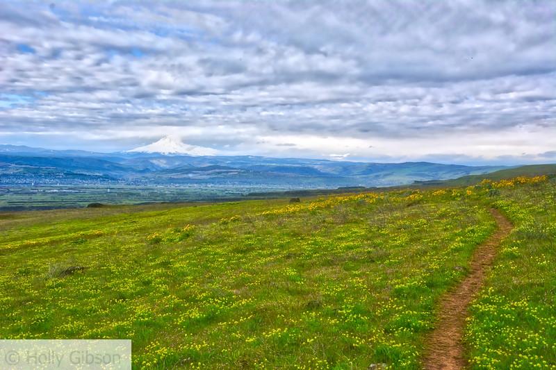 Vista Trail - Dalles Mountain Ranch