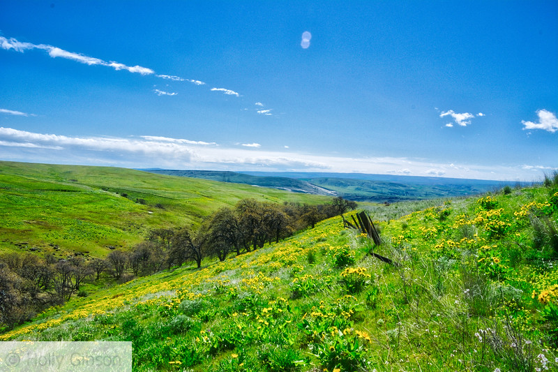 Columbia Hills State Park