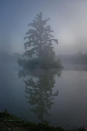 Fishing Hole Park, New Madrid, Missouri. Pentax K-20, Pentax lens 29.38mm, 1/100, f/20.0, ISO 800.