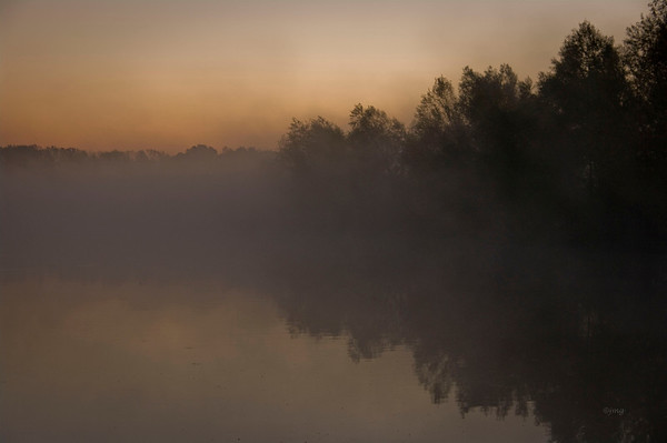 Early morning fog at fishing hole in New Madrid, MO