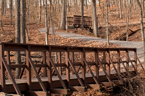 Conservation Interpretive Center, Cape Girardeau, MO:  Nature Trail. Pentax K-7, Pentax 50-135 mm f/2.8 lens, Shot at AP-f/16, SS-1/5, FL-50mm, and ISO-100.