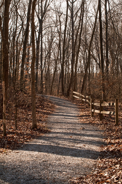 Conservation Interpretive Center, Cape Girardeau, MO:  Nature Trail. Pentax K-7, Pentax 50-135 mm f/2.8 lens, Shot at AP-f/15, SS-1/5, FL-50mm, and ISO-100.