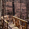 Conservation Interpretive Center, Cape Girardeau, MO:  Hiking Trail Bridge . Pentax K-7, Pentax 50-135mm f/2.8 lens, Shot at AP-f/10, SS-1/40, FL-50mm, and ISO-100.