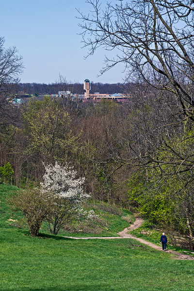 D092-2012 From the top of the Arb, at Geddes Ave., you can easily see across the intervening Huron River Valley to North Campus.  The strange looking tower in the distance is the 167 foot tall Ann and Robert H. Lurie Tower, which houses the newer of two grand carillons on the University of Michigan campuses.  The older is in Burton Tower on the central campus.  Based on Google Maps, Lurie Tower is about 1 1/4 miles from the Geddes Ave entrance, as the crow flies.<br /> <br /> Nichols Arboretum, Ann Arbor - the distant bell tower is map tagged for this shot.<br /> April 2, 2012<br /> (nex-5)