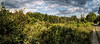 River wetlands panorama with clouds