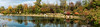 View of the north shore of the lake, Japanese Garden