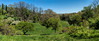 The Arb panorama from the main overlook