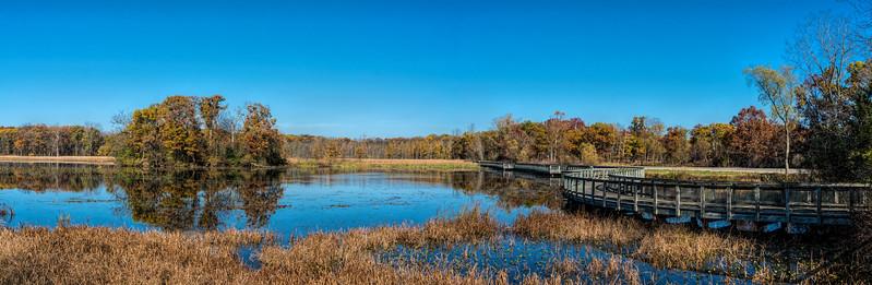 Wildwing Lake, heron rookery and boardwalk, panorama