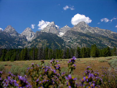 The Grand Tetons, Wy