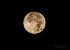 HARVEST MOON  SEPT 18 2013