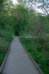 Boardwalk in Corbett's Glen, Rochester, NY 20110524