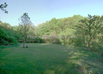 The meadow (actually an alluvial plain) in Corbett's Glen, Rochester, NY 20110524
