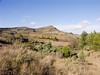 Cabano Naouto, Pradelles-en-Val, Ypresian, Eocene<br /> Konica Minolta Dimage A2