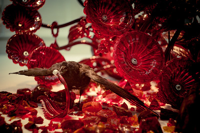 artist: Javier Pérez  @ Corning Museum of Glass