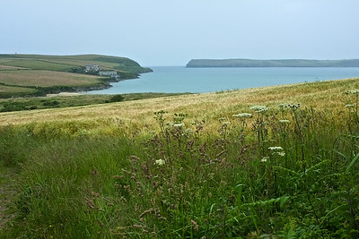 Rural view of Hawker's Cove