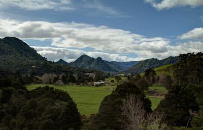 Coromandel Landscape near Thames, New Zealand