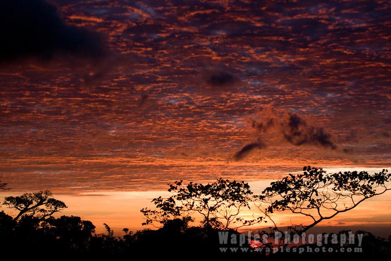 Amazing Cloads, Sunset, Monteverde Lodge