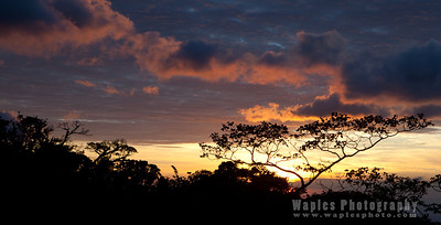 Sunset, Monteverde Lodge